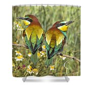 Bee-eaters Shower Curtain