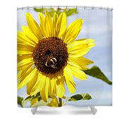Bee On Flower Shower Curtain by Les Cunliffe