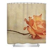 Bellezza Shower Curtain
