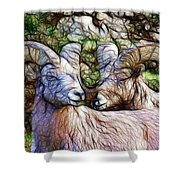 Bighorns Shower Curtain