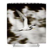 Bird Flying In The Clouds Shower Curtain