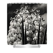 Blooms Within A Bloom 3 Shower Curtain
