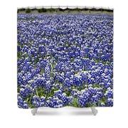Blue Bonnet Carpet V7 Shower Curtain