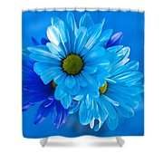 Blue Daisies In Vase Outdoors Shower Curtain