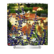 Blue Flowers And Rooftops In Sarlat Shower Curtain