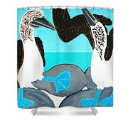 Blue Footed Boobies. Shower Curtain