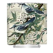 Blue Jays And Blossoms Shower Curtain
