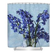 Bluebells 1 Shower Curtain