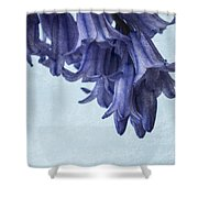 Bluebells 3 Shower Curtain