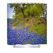 Bluebonnet Meadow Shower Curtain
