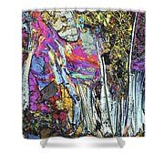 Blueschist Shower Curtain