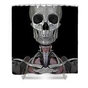 Bones Of The Head Shower Curtain