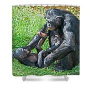 Bonobo Adult And Baby Shower Curtain