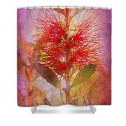 Bottlebrush Shower Curtain