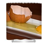 Broken Brown Egg Shower Curtain