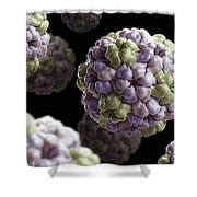 Brome Mosaic Virus Shower Curtain