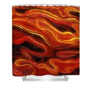 Brush Strokes In Red Shower Curtain
