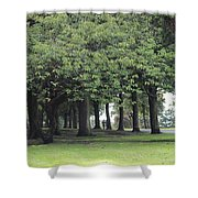 Buile Hill Park Shower Curtain
