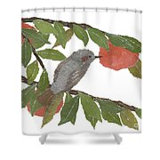 Bulbul And Persimmon  Shower Curtain
