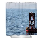 Buoy Sea Lions Shower Curtain