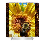 1 Busy Bumble L Shower Curtain
