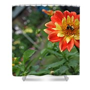 Busy Little Bee Shower Curtain