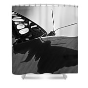 Butterfly II Shower Curtain