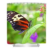Butterfly On Bush Shower Curtain