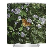 Butterfly On Oregano Shower Curtain