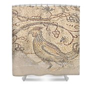Byzantine Mosaic Depicting Animals And Hunting Scenes. Shower Curtain