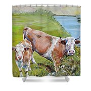 Cow And Calf Shower Curtain