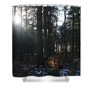 Cannock Chase Shower Curtain