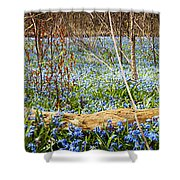 Carpet Of Blue Flowers In Spring Forest Shower Curtain