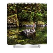 Cascade Locks, Oregon, Usa. A Woman Shower Curtain