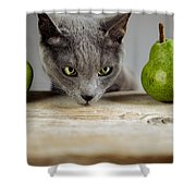 Cat And Pears Shower Curtain