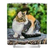 Cat On Tree Trunk Shower Curtain