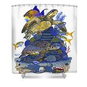 Cayman Turtles Shower Curtain