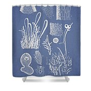 Ceratodictyon Spongiosum Zanard Shower Curtain