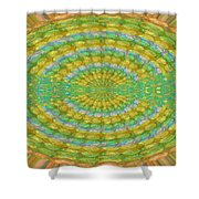 Chakra Mandala Green Wheel Meditation Unique Style Creative Beads Crystal Energy Healing Round Oval  Shower Curtain