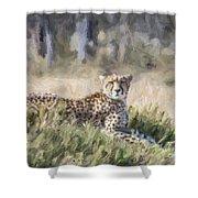 Cheetah Acinonyx Jubatus Shower Curtain
