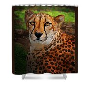 Cheetah Mama Shower Curtain