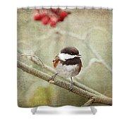 Chickadee In Winter Shower Curtain