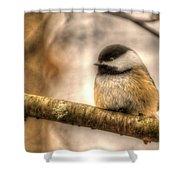 Chickadee Magic Shower Curtain