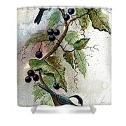 Chickadees And Blueberries Shower Curtain