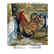 Chicken Coop Shower Curtain