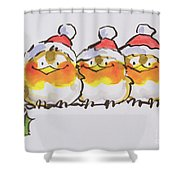 Christmas Robins  Shower Curtain