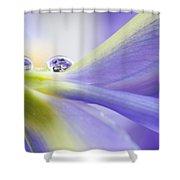 Close Up Iris Shower Curtain