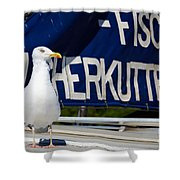 Closeup Of A Seagull On A Fisher Boat  Shower Curtain
