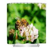 Clover Bee Shower Curtain