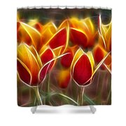 Cluisiana Tulips Fractal Shower Curtain